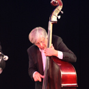 Double Bass Player - picture by Graham Silvester
